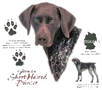German Shorthaired Pointer T-Shirt - History Collection