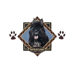 Bouvier des Flandres T-Shirt - Diamond Collection