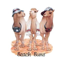 Camel T-Shirt - Beach Bums