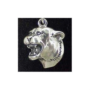 Cougar Sterling Silver Charm