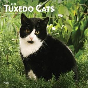 Tuxedo Cats Calendar 2015