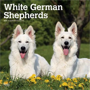 White German Shepherds Calendar 2014