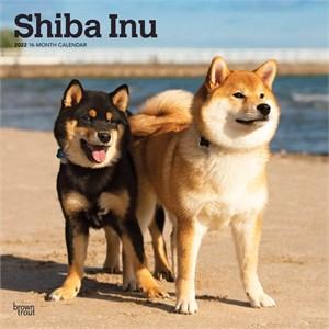 Shiba Inu Calendar 2015