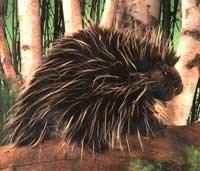Porcupine Puppet