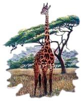 Giraffe T-Shirt - Exotic Style