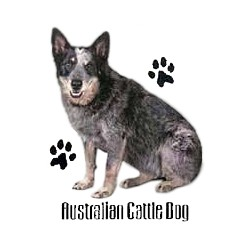 Blue Heeler T-Shirt - Profiles