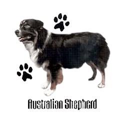 Australian Shepherd T-Shirt - Profiles