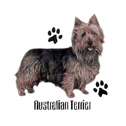 Australian Terrier T-Shirt - Profiles