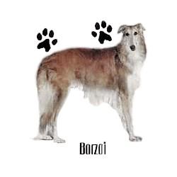 Borzoi T-Shirt - Profiles