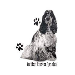 English Cocker Spaniel T-Shirt - Profiles