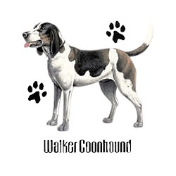 Coonhound T-Shirt - Profiles