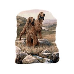 Irish Setter T-Shirt - In a Field