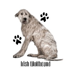 Irish Wolfhound T-Shirt - Profiles