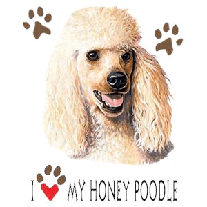 Poodle T-Shirt - I Heart My