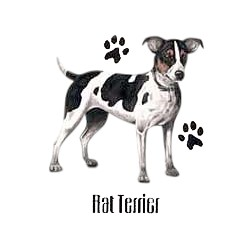 Rat Terrier T-Shirt - Profiles