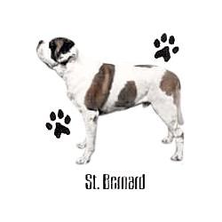 Saint Bernard T-Shirt - Profiles