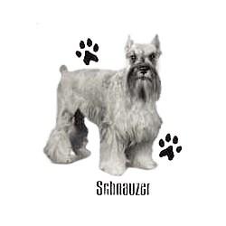 Schnauzer T-Shirt - Profiles