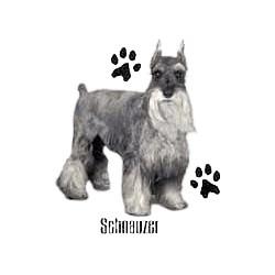 Schnauzer T-Shirt - Profiles #2