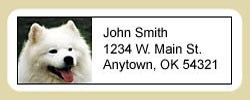 American Eskimo Dog Address Labels