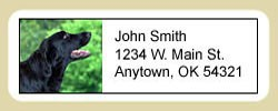 Flat-Coated Retriever Address Labels