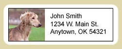 Saluki Address Labels