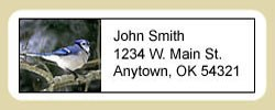 Blue Jay Address Labels