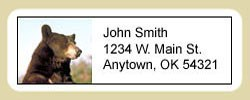 Brown Bear Address Labels