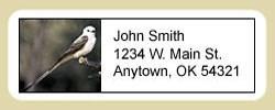 Scissor Tailed Flycatcher Address Labels