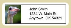 Ostrich Address Labels