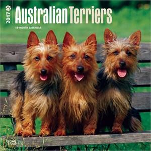 Australian Terriers Calendar 2015