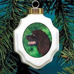 American Water Spaniel Christmas Ornament Porcelain