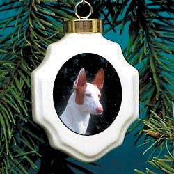 Ibizan Hound Christmas Ornament Porcelain