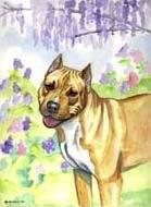 Pit Bull Terrier Garden Flag