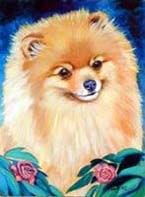 Pomeranian Garden Flag
