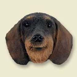 Wire Haired Dachshund Magnet