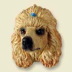 Apricot Poodle Magnet