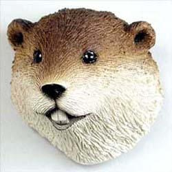 Beaver Magnet
