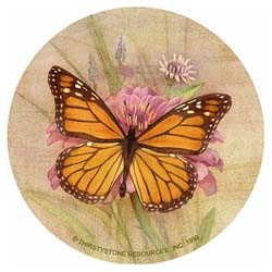 Butterfly Drink Coasters