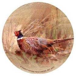 Pheasant Drink Coasters
