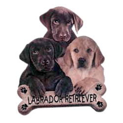 Black Lab T-Shirt - Trio of Three Puppies