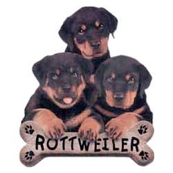 Rottweiler T-Shirt - Trio of Three