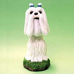 Maltese Bobble Head