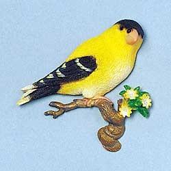 Finch Magnet