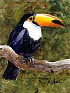 Toucan Garden Flag