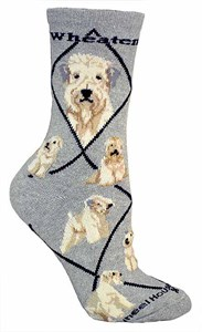 Wheaten Terrier Socks
