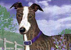 Greyhound Floormat