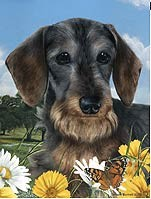 Wirehaired Dachshund Garden Flag