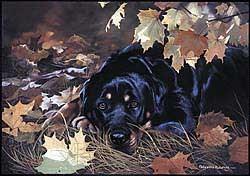 Rottweiler Floormat
