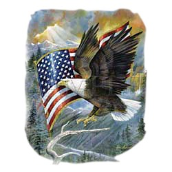Eagle T-Shirt - With American Flag