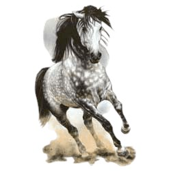 Gray Horse T-Shirt - Eye Catching